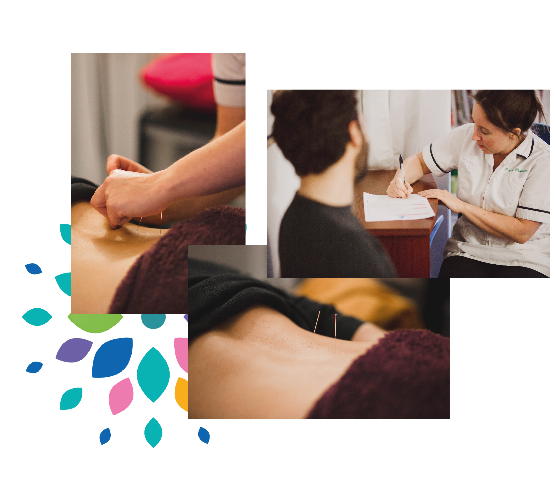 Harmony Physiotherapy Acupuncture